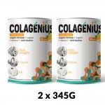 Colagenio Colagenius Active Laranja Pó 2x345g